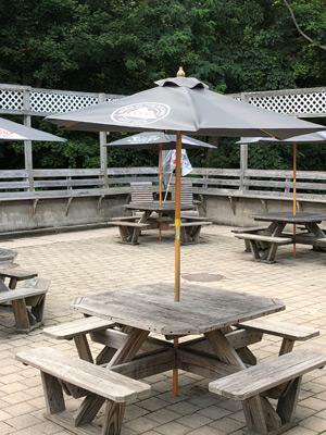 patio-IMG_5743